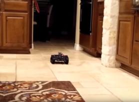 DFRobot Devastator Tank Treaded Tracked Robot Autonomous