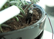 How To Create Your Very Own Soil Moisture Sensor