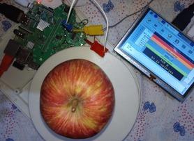 Raspberry Pi Smart Food Scale with Hexabitz Modules