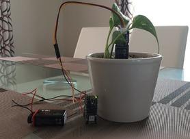 IoT Moisture Sensor