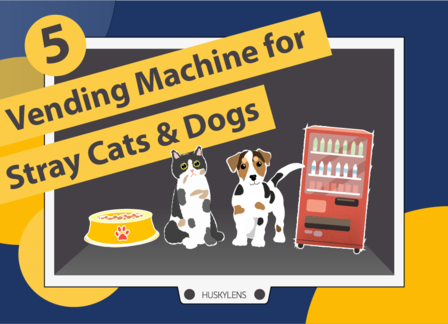 Vending Machine for Stray Cats & Dogs | Huskylens Playground with micro:bit EP05