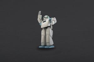 HOVIS Eco Plus - 20 DOF Humanoid Robot