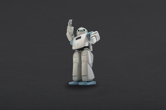 HOVIS Eco Plus - 20 DOF Humanoid Robot(Discontinued)