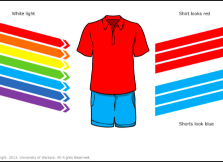 WHAT COLOR T-SHIRT SHOULD YOU WEAR ON A HOT, SUNNY SUMMER DAY?