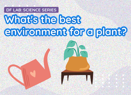 What's the best environment for a plant? | DFRobot Science Lab EP09