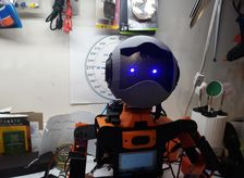 Andrew the Robot