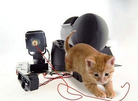 Pet Interactive Device