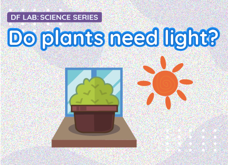 Do plants need light? | DFRobot Science Lab EP07