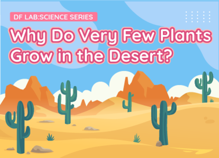 Why Do Very Few Plants Grow in Deserts? | DFRobot Science Lab Season 2 EP06