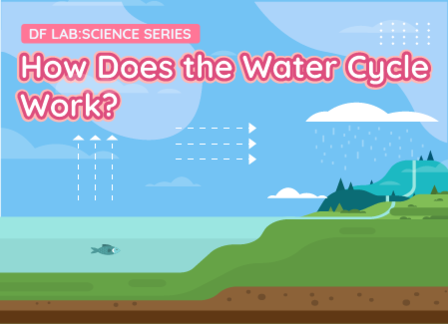 How Does the Water Cycle Work? | DFRobot Science Lab Season 2 EP07